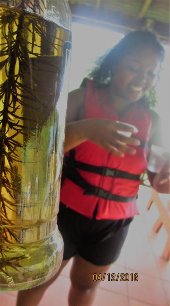 Rosemary rum .jpg