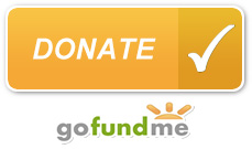 gofundme-button